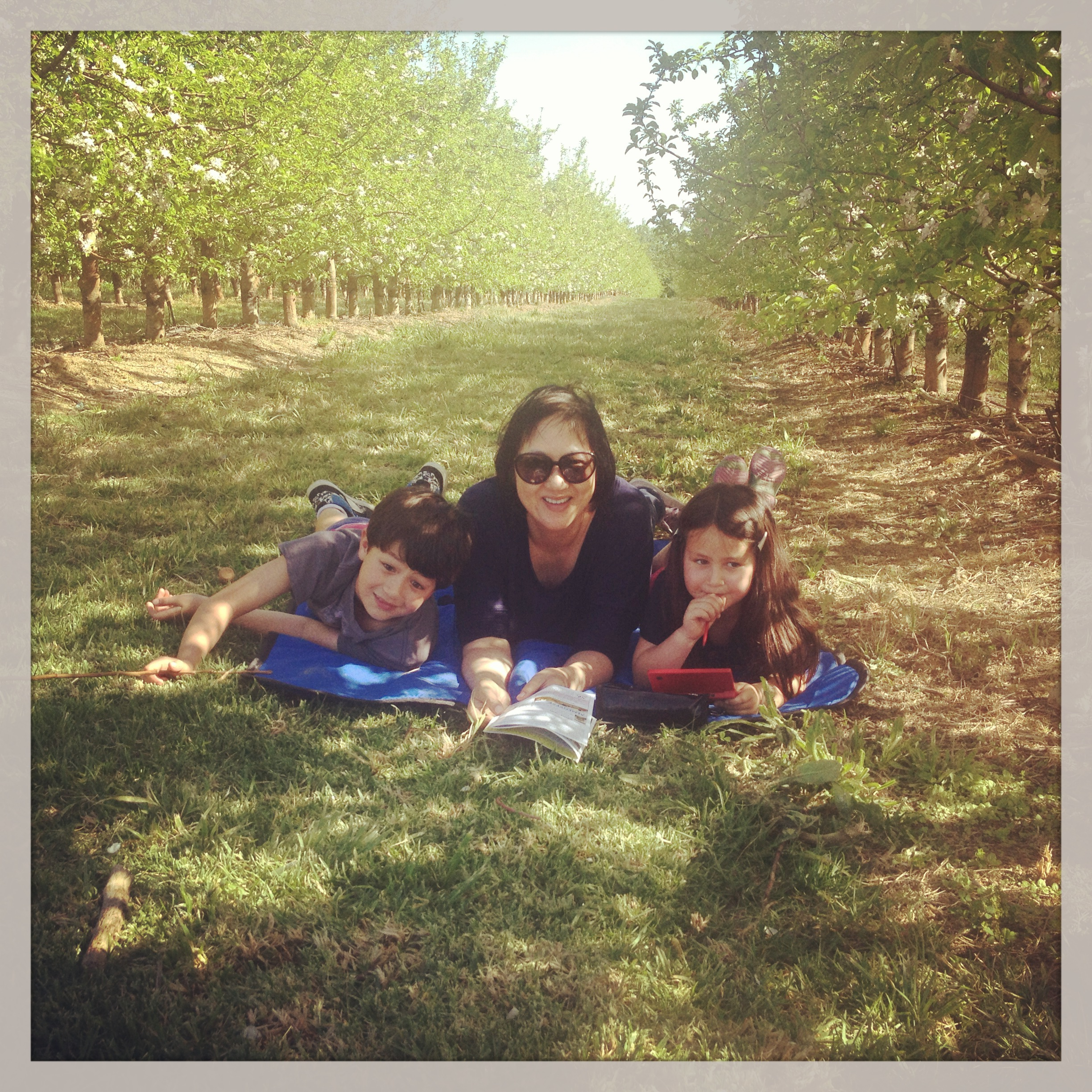 A picnic among the apple orchards. #myideaofbliss