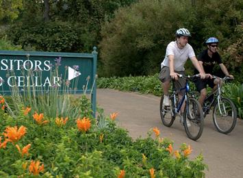 Cape Cycling Tours
