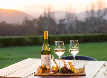 Franschhoek Wine Region