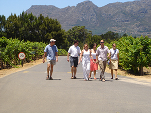 Cape Wine Tours Options and Ideas!
