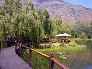 The Cape's oldest Wine Regions Tour